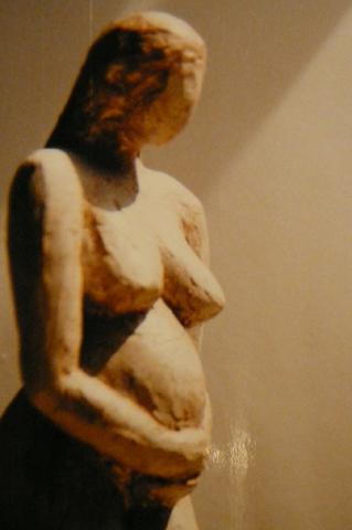 Beelden - Zwanger