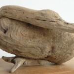Vogels van wrakhout - Eend