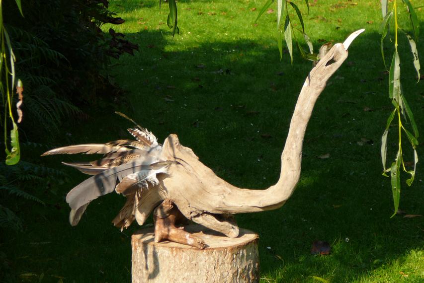 Vogels van wrakhout - Zwaan