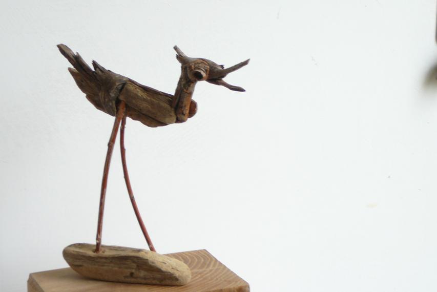Vogels van wrakhout - Brutaal Steltlopertje